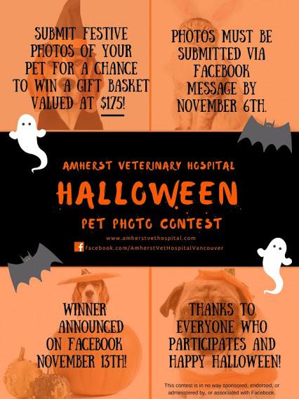 Hallowe'en Pet Photo Contest!