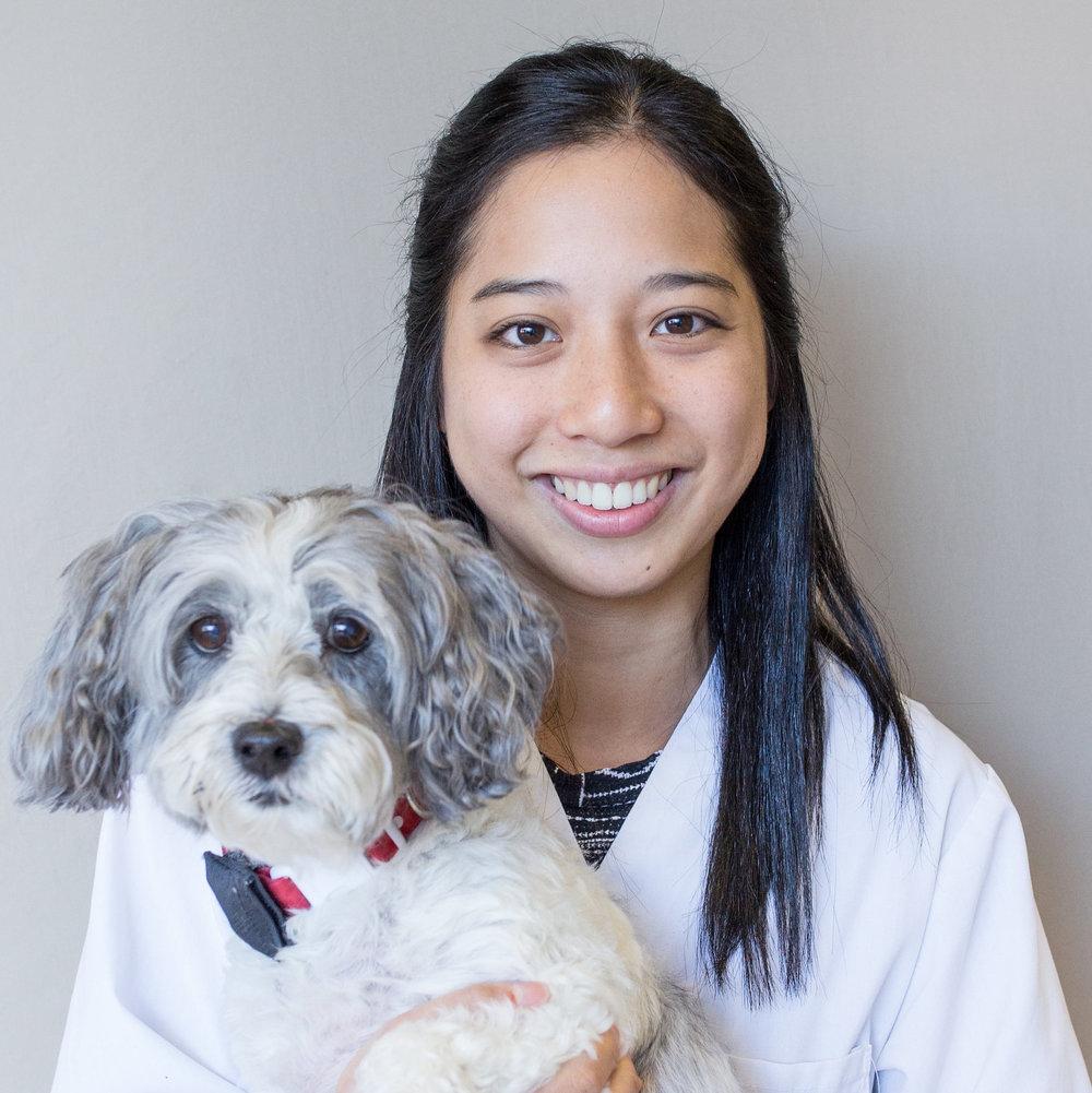 Dr. Cheryl Kong