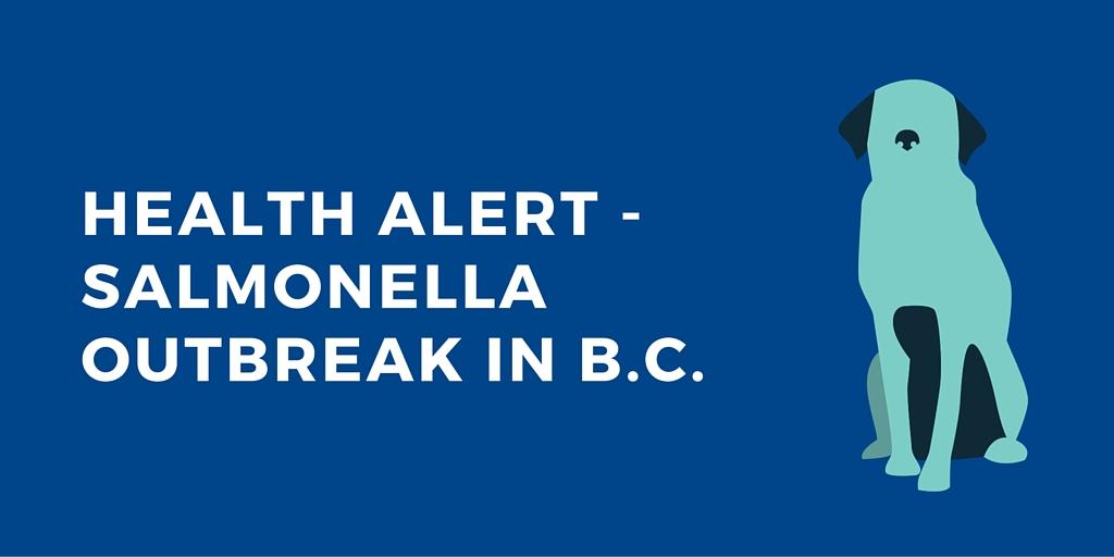 HEALTH ALERT – Salmonella Outbreak in B.C.